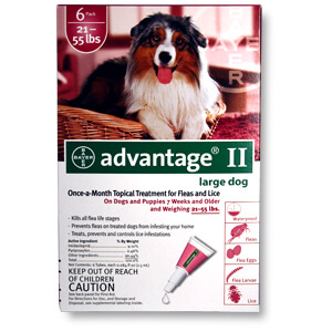 Advantage II Large Dogs 21-55 lbs, 6 Pack, Red