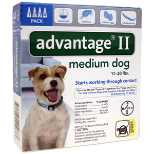 Advantage II Medium Dog 11-20 lbs, 4 Pack Teal