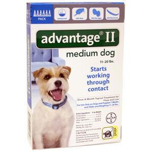 Advantage II Medium Dog 11-20 lbs, 6 Pack Teal