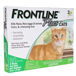Buy Frontline Plus for Cats