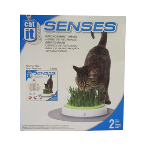 Grass Garden Refill Kit, 2-pk