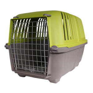 Spree Pet Carrier for Small Dogs and Cats, 22