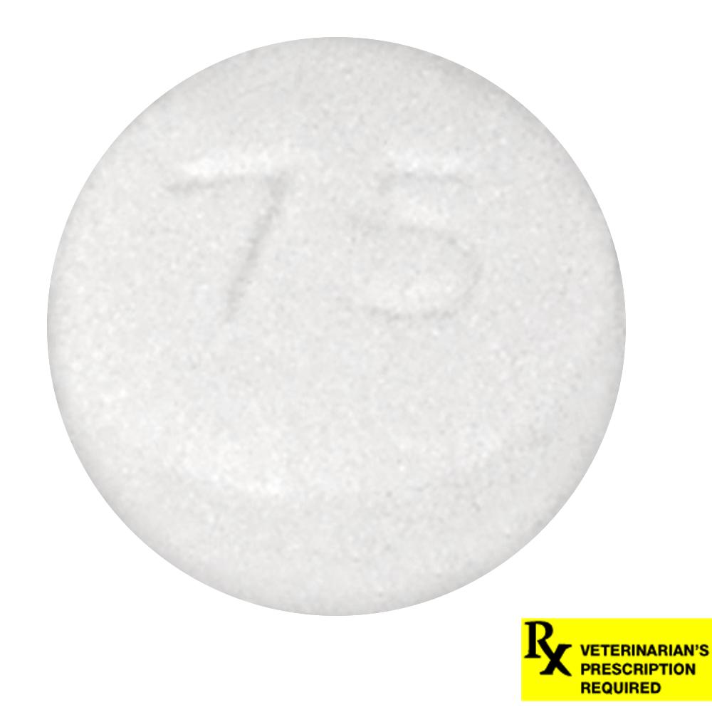 Hydroxyzine Hcl 25 Mg Tablet Reviews ‒ 404: Pagina niet gevonden