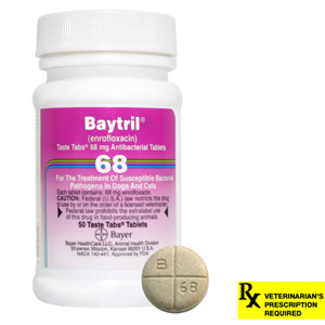 Baytril Rx, Taste Tabs, 68 mg x 50 ct