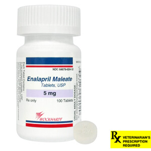 Rx Enalapril Tablets, 5 mg x 100 ct