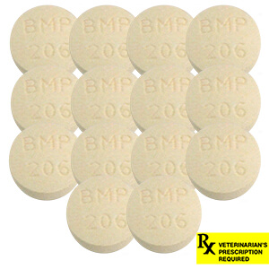 Rx Clavamox Tablets, 250 mg x 14 ct
