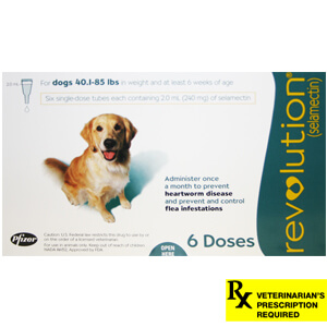 Revolution Rx for Dogs, 40.1-85 lbs, 6 Month (Teal)