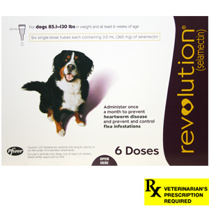 Revolution Rx for Dogs, 85.1-130 lbs, 6 Month (Plum)