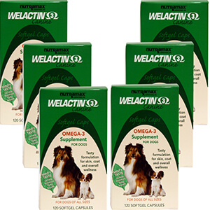 Welactin Canine Softgel Caps, 120 ct. 6 Pack