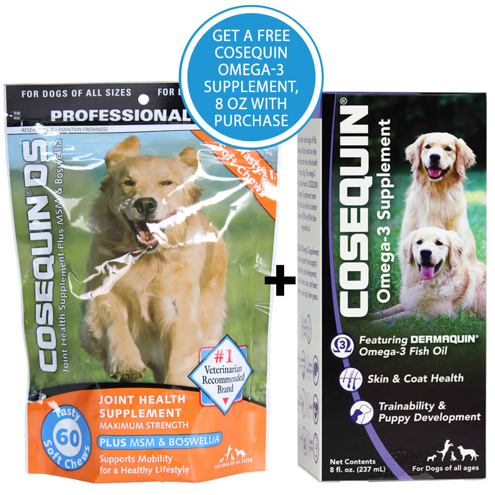 cosequin ds plus msm for dogs 60 soft chews. Black Bedroom Furniture Sets. Home Design Ideas