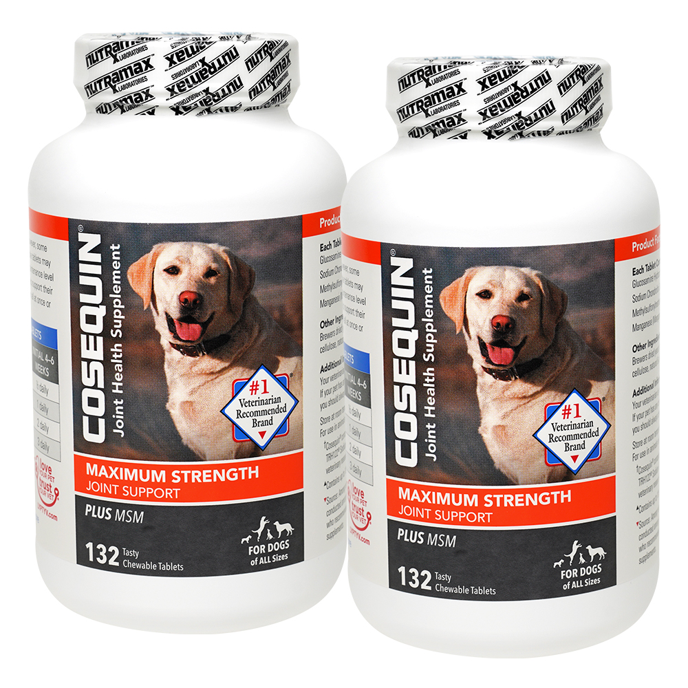 Cosequin® DS Joint Health Supplement Plus MSM for Dogs, 132 Chewable Tablets, 2 Pack