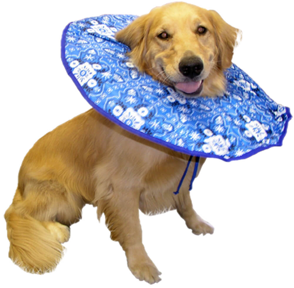 Soft Elizabethan Collar For Dogs