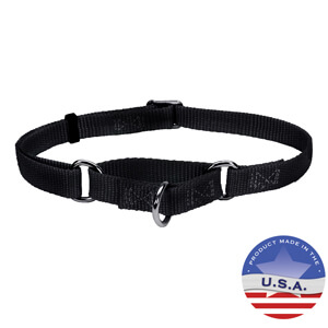 No Slip!® Martingale Adjustable Collar for Dogs, 3/8