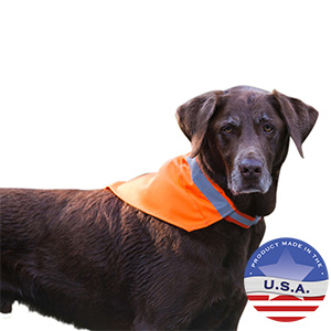 No Fly Zone Safety Kerchief Blaze Orange