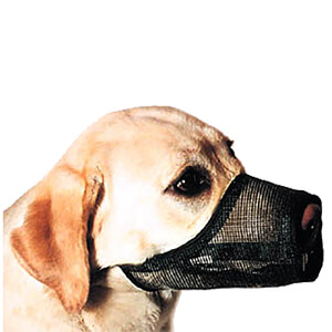 Best Fit Muzzle Size 5