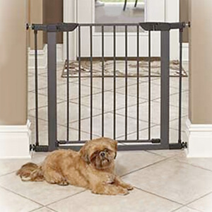 MidWest Homes For Pets Steel Gate