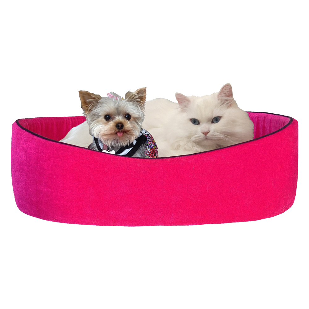 Trifexis For Cats Reviews