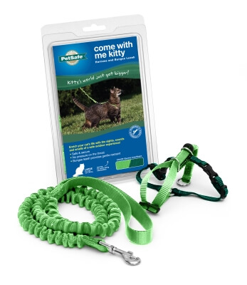 Kitty Harness & Bungee Lead Lime - Large