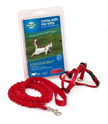 Kitty Harness & Bungee Lead Red - Small