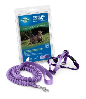 Kitty Harness & Bungee Lead Purple - Large