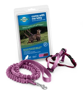 Kitty Harness & Bungee Lead Rose - Large