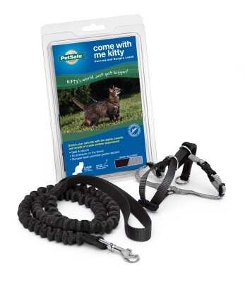 Kitty Harness & Bungee Lead Black - Large