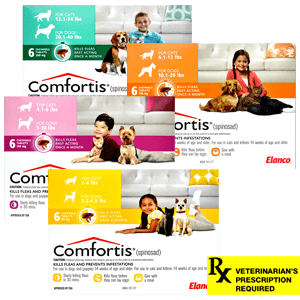 Comfortis Rx for Cats