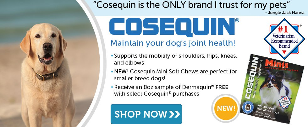pet supplies dog cat discount grooming medications. Black Bedroom Furniture Sets. Home Design Ideas