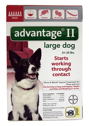 Advantage Ii Dosage For Dogs And Cats
