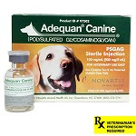 Adequan Canine Rx