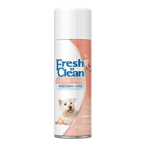 Fresh `n Clean Cologne Spray, Fresh Floral, 6 oz