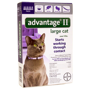 Advantage II Large Cat Over 9 lbs, 6 Pack Purple