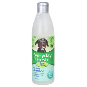 Fresh 'n Clean Everyday Fresh Itch Relief Shampoo