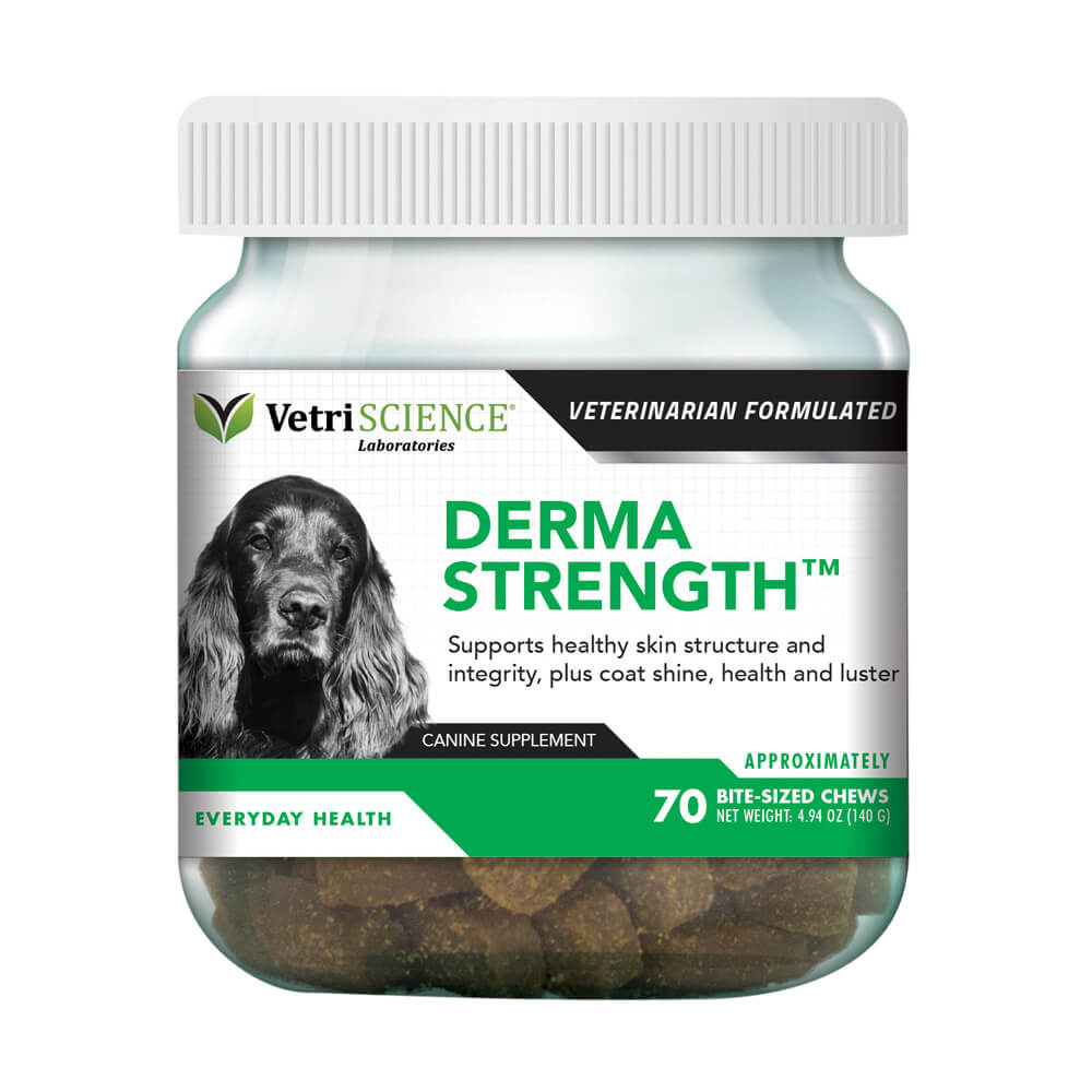 Derma Strength for Dogs, 70 Chews