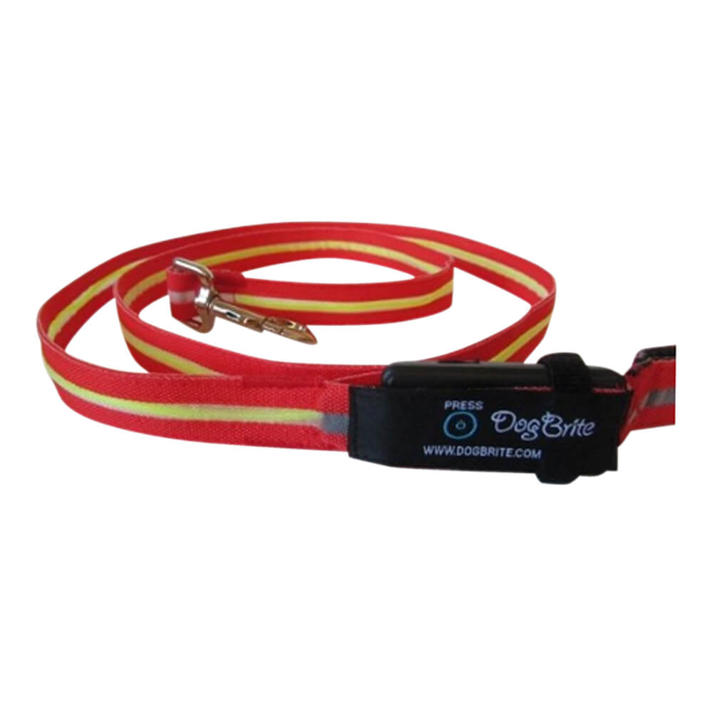 Red DogBrite EL Lighted Leash