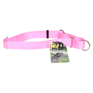 No Slip! Martingale Collar for Dog