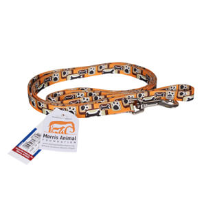 "Pet Attire 6' Dog Leash 5/8"" Wide"
