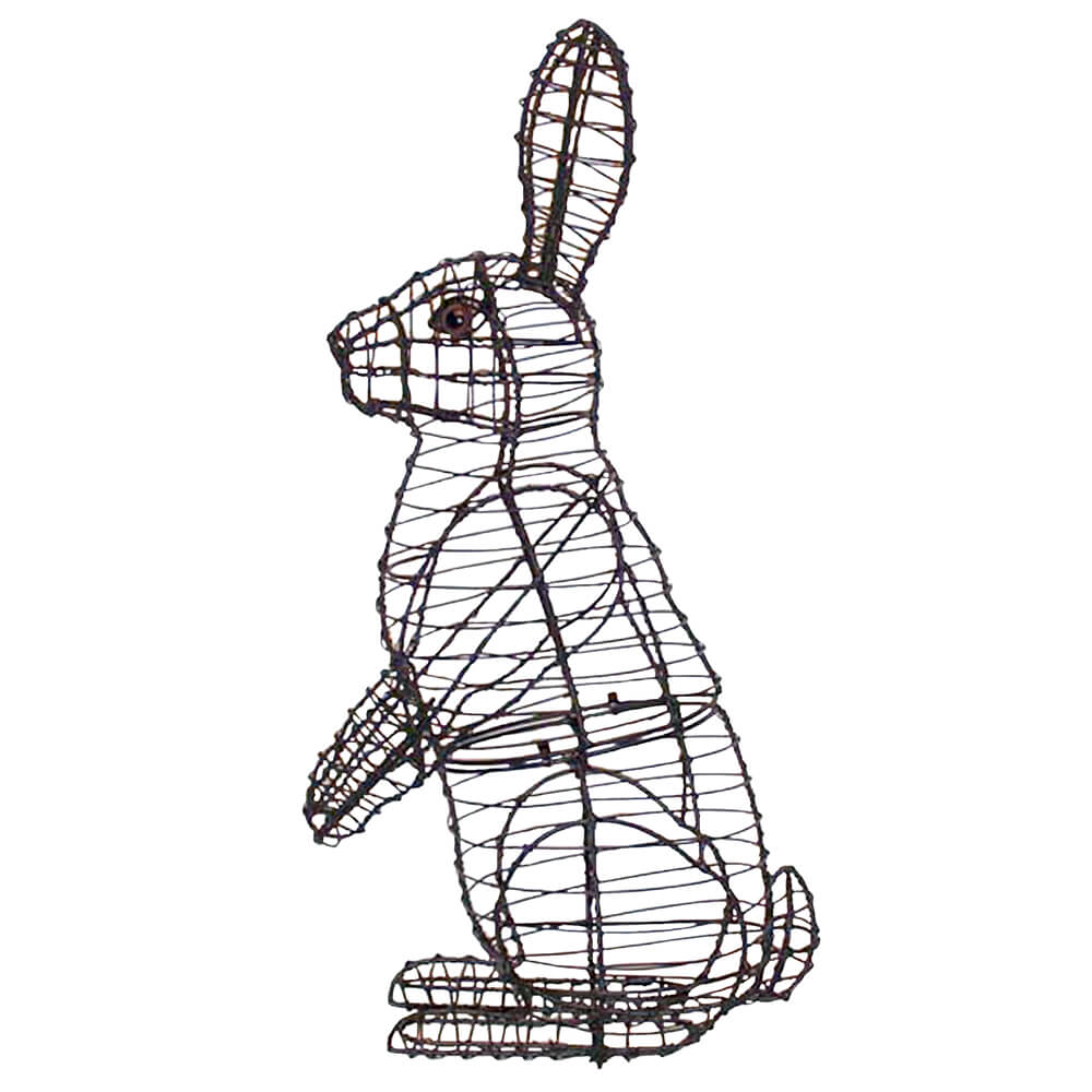 Topiary Wire Basket - Trusted Wiring Diagram