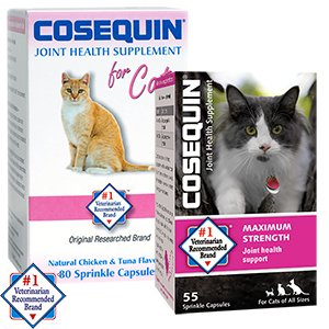 Buy Cosequin for Cats