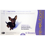 Revolution Rx for Dogs, ORM-D, 5.1-10 lbs, 6 Month (Purple)