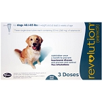 Revolution Rx for Dogs, ORM-D, 40.1-85 lbs, 3 Month (Teal)