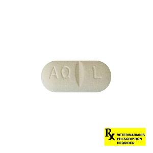 Rx Apoquel 16 mg, Single Tablet