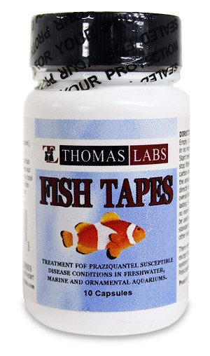 fish tapes praziquantel capsules