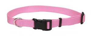 #601 3/4 Nylon Web Collar 18 Bright Pink